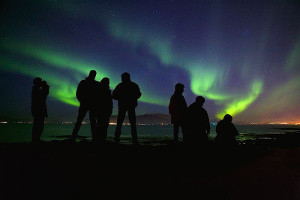 Northern Lights cruise highlights