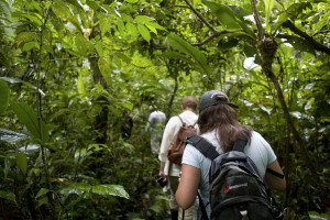 Amazon cruise activities - hiking