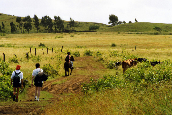 Easter Island cruise activites - hiking