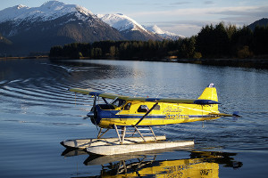 Glacier Bay cruise activities - seaplane