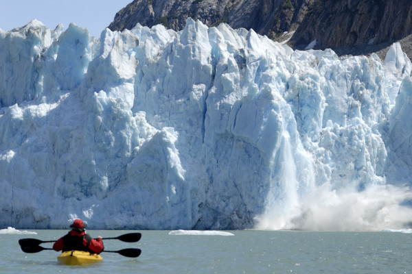 Glacier Bay cruise highlights - Kayaking