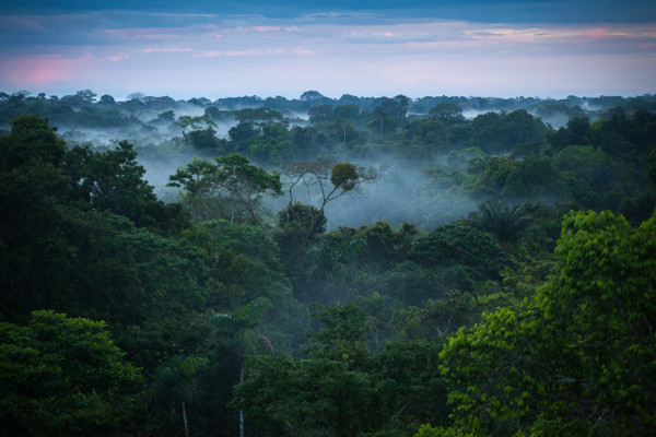 best time to visit the Amazon