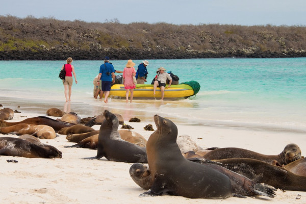 best Galapagos cruise - editors pick