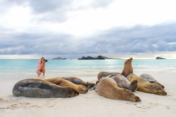 Best things to do in the Galapagos - photography