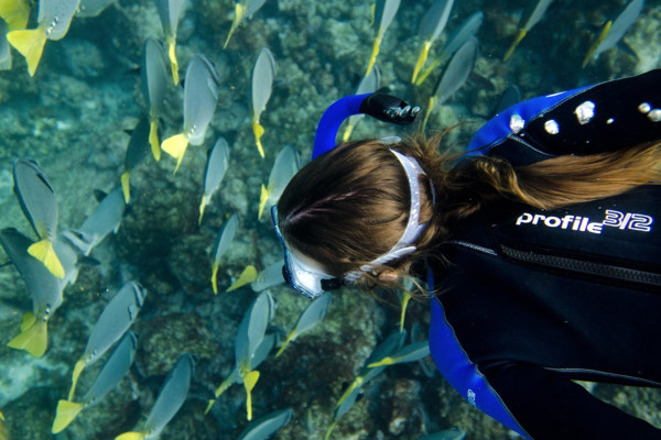 Best things to do in the Galapagos - snorkeling