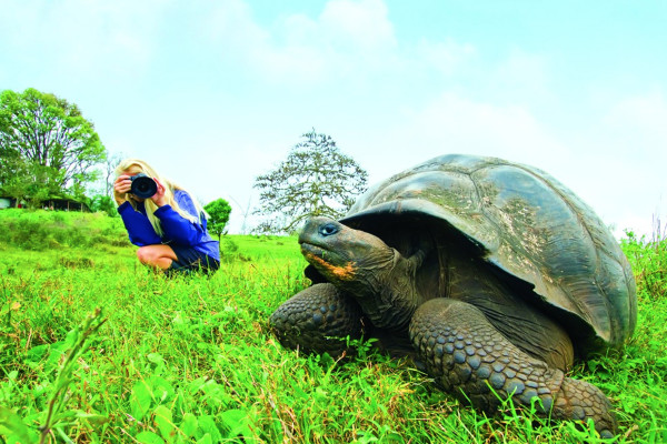 Best things to do in the Galapagos