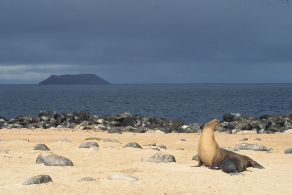 Galapagos islands facts - geography