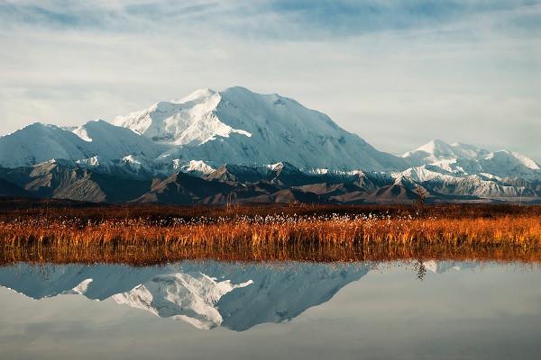 Alaska cruise and land tour