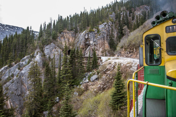 Alaska Cruise With Train - yukon