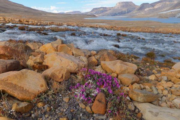 how to get to Ellesmere Island